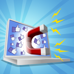 How_to_Attract_the_RIGHT_Kind_of_Facebook_Fans..._Like_Bees_to_Honey_250